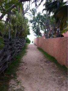 ライカニビーチ2
